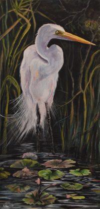 525 Great White Egret