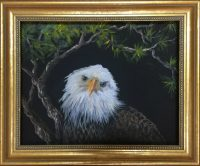 562 Eagle Eye