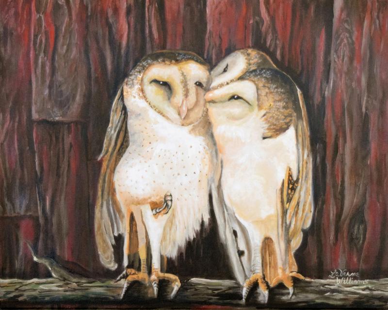Barn Owls in Love