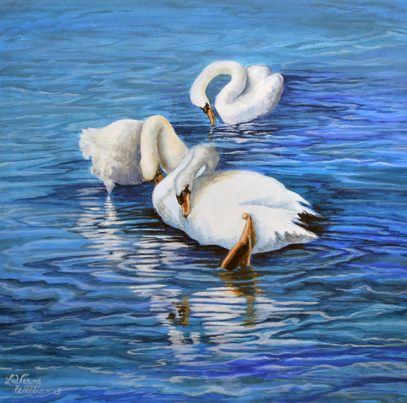 Swans Reflected
